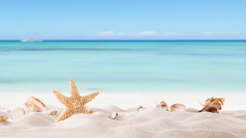 Topick d160607 - Immagini di spongebob e sabbia ...