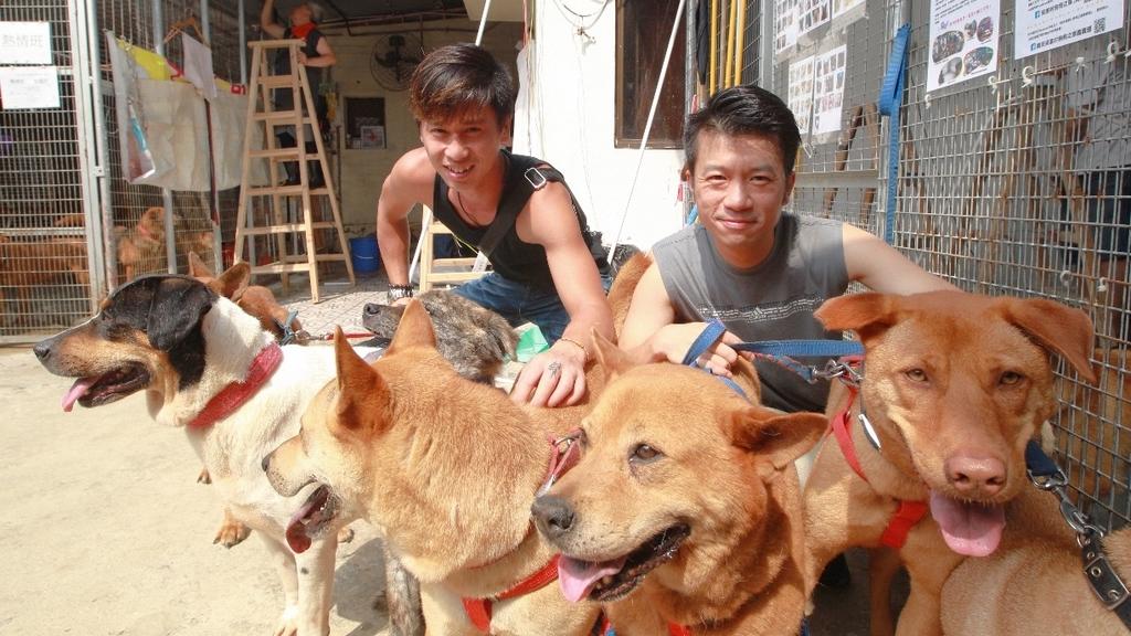 梁爽(左)及Jimmy均是首次做義工,直言為狗狗願付出。(冼偉倫攝)