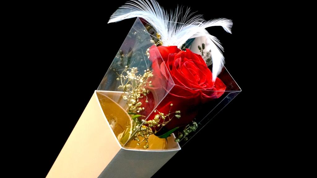 200多元的單枝肯亞玫瑰配純白羽毛及金色滿天星。(相片提供: Floritale by Jko)