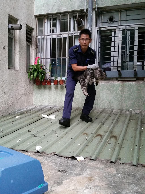 愛協督察很多時在危險的地方進行拯救工作(愛協提供圖片)