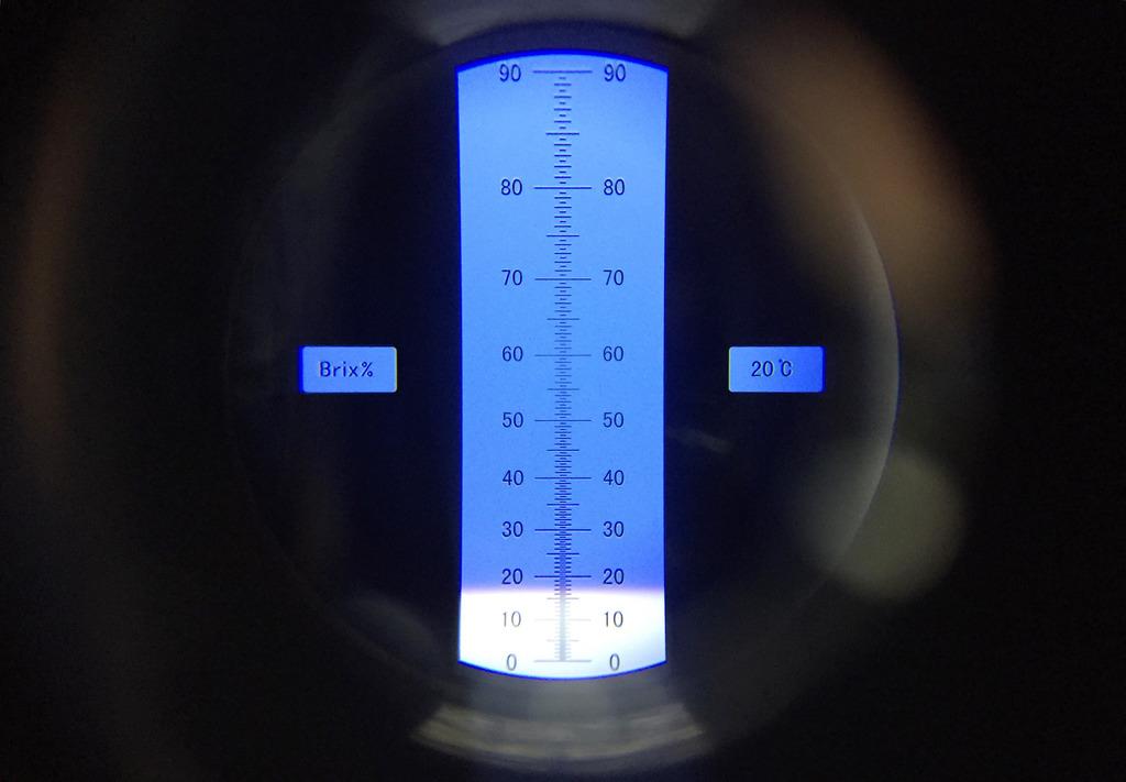 彩虹奇異果的甜度測試顯示為17度。(陳永康攝)