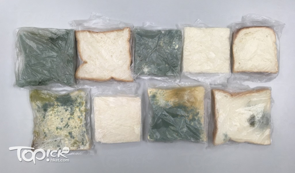 測試第12天,759方包(上排左2)、嘉頓切片三文治(上排右2)、嘉頓生命麵包(上排右1)和聖安娜方包(下排左2),均未有發霉跡象。(陳子謙攝)