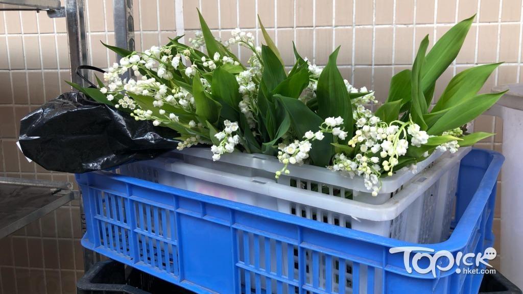 殯儀館門口擺放大量的鈴蘭花。(勞佩欣攝)