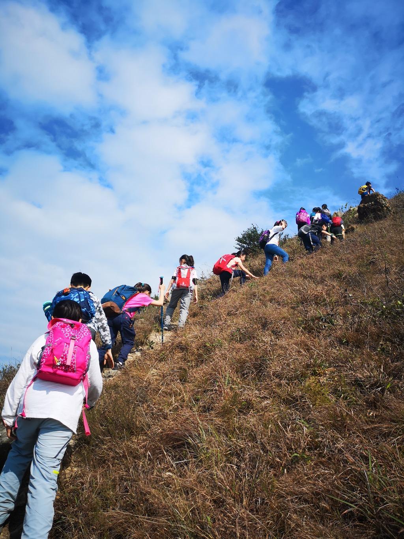 小四至小六學生旅行日遠足,一齊行山。(受訪學校提供照片)